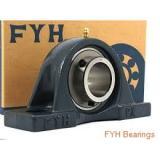 FYH UCF205E Unidad De Rodamiento